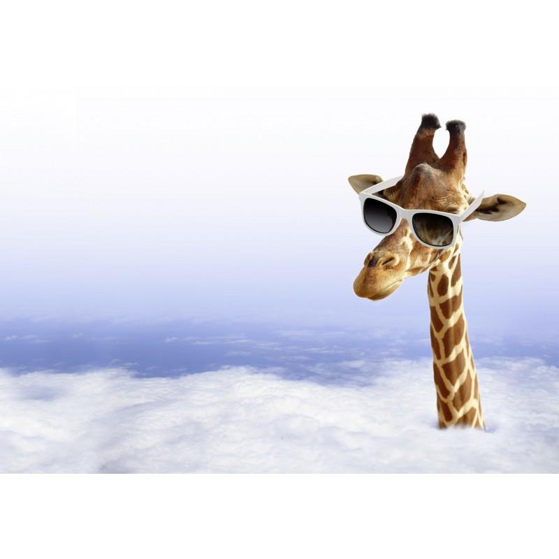 Deko-Panel: Giraffe, 100 x 50 cm