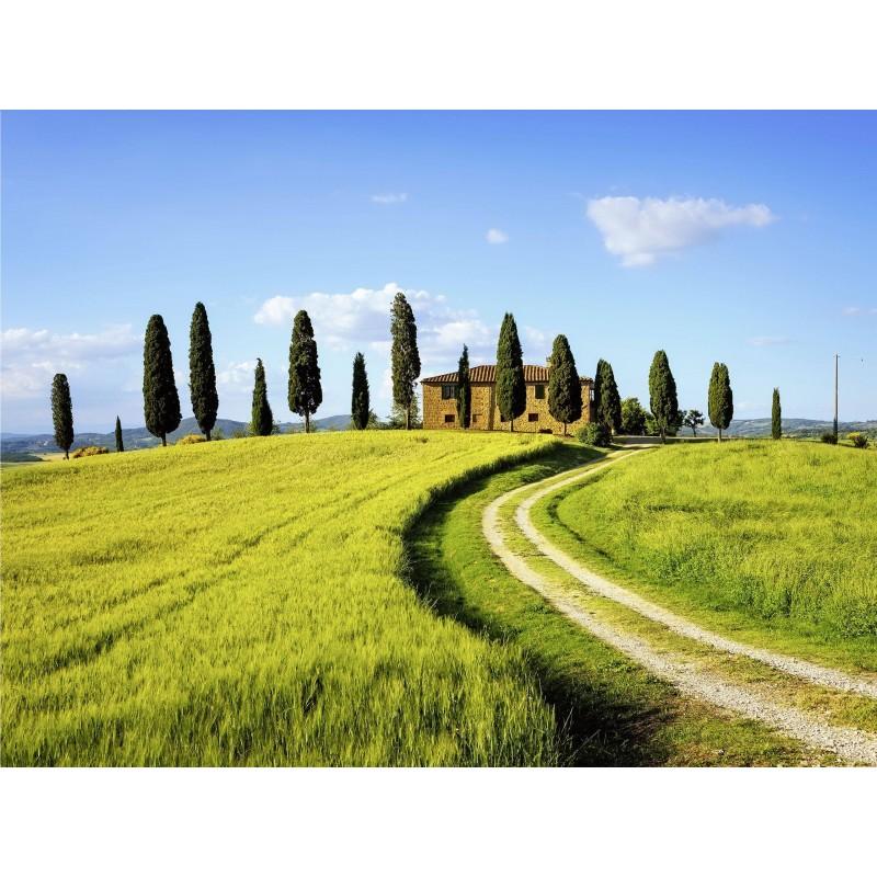 Leinwandbild: Toskana, 80 x 60 cm