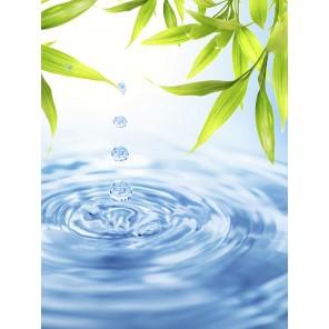 Leinwandbild: Drop, 40 x 30 cm
