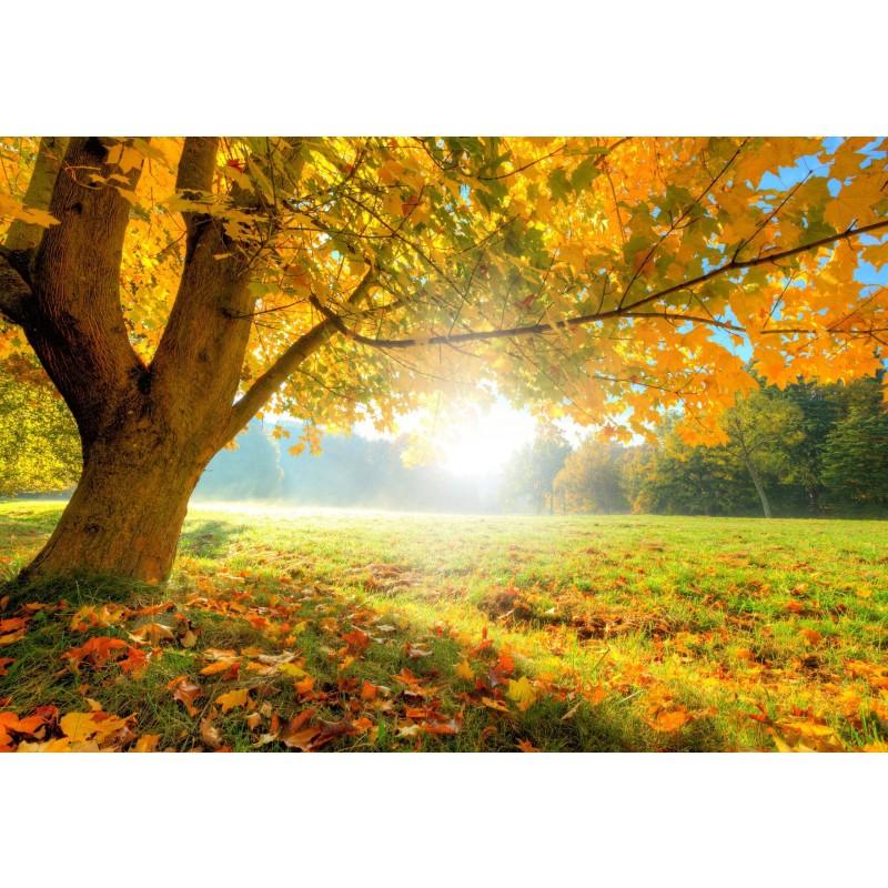 Deko-Panel: Herbst, 98 x 68 cm